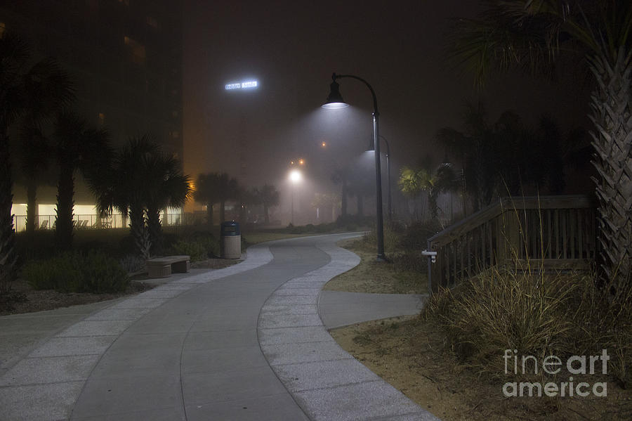 Fog Photograph - Foggy Path by Nelson Watkins