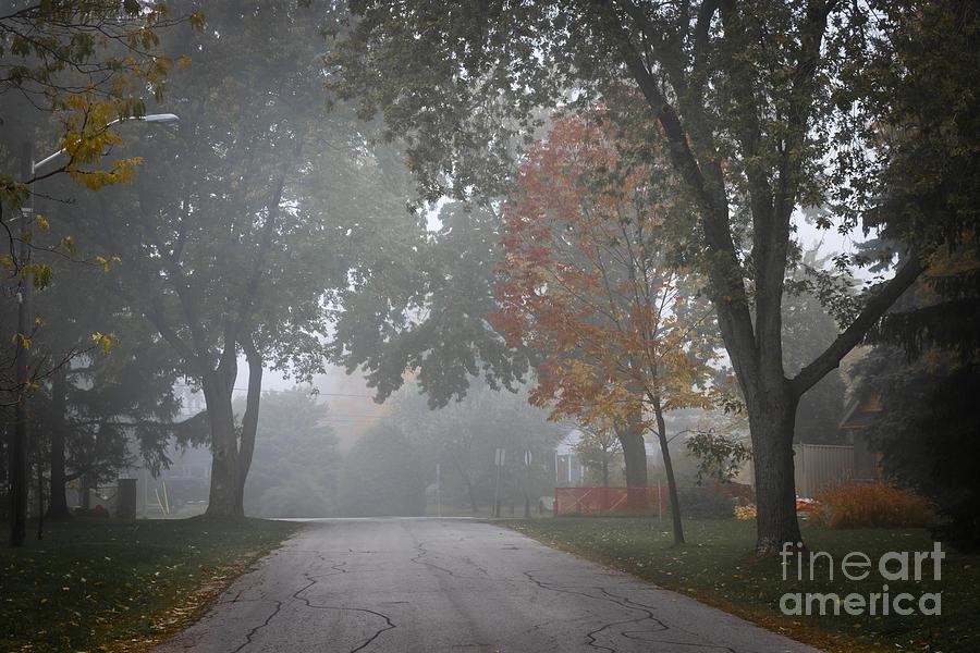 Foggy Photograph - Foggy Street by Elena Elisseeva