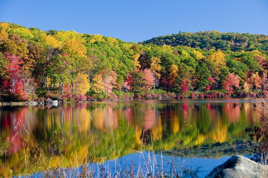 Lake Photograph - Foilage In The Fall by Anthony Sacco