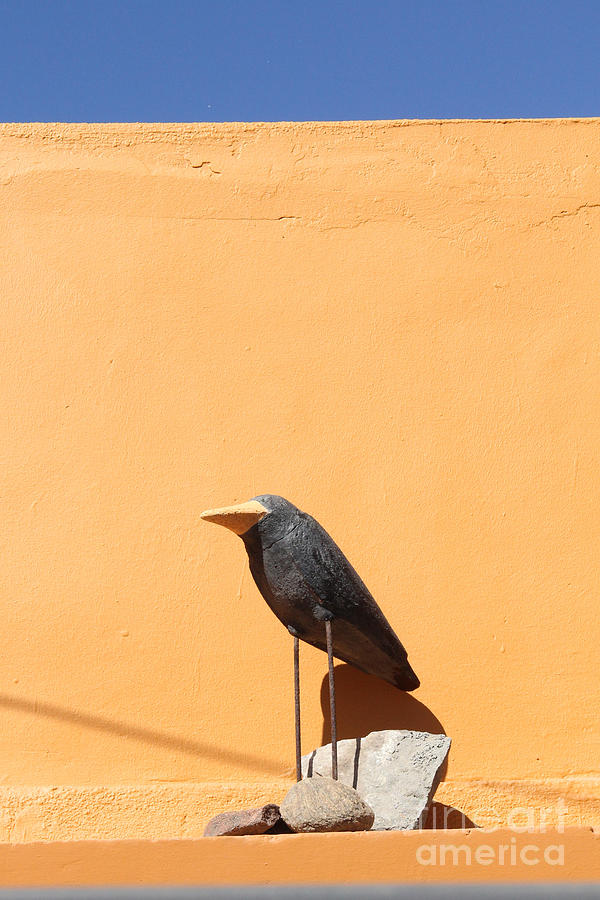 Crow Photograph - Folk Art Crow Todos Santos by Linda Queally