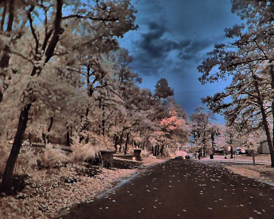 Infrared Photography Photograph - Follow The Infrared Road by Thomas  MacPherson Jr