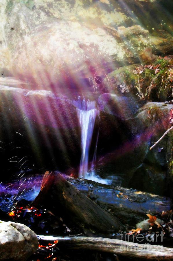 Landscape Photograph - Follow  The Light by Peggy Franz