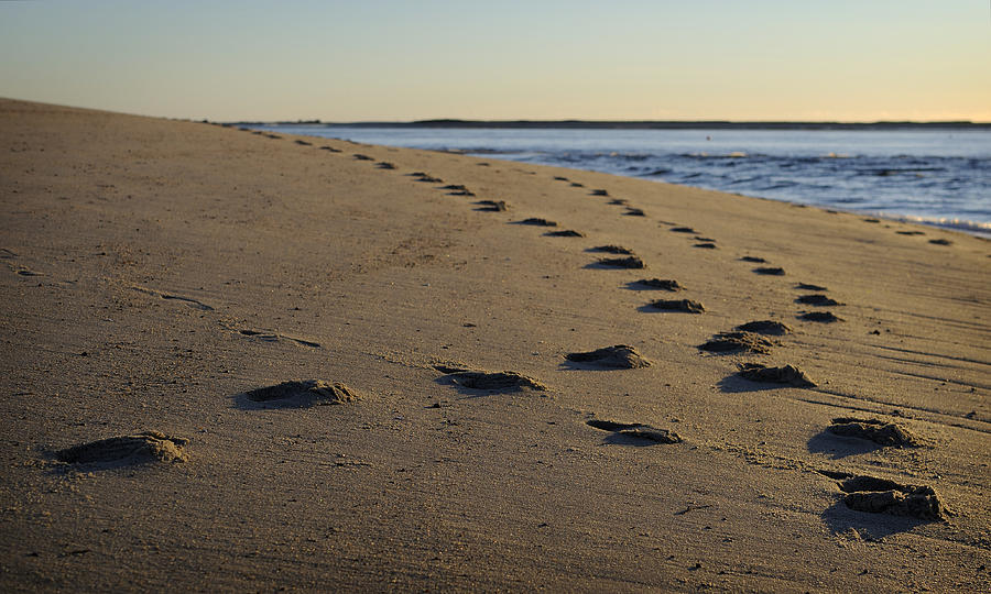 Beach Photograph - Follow Your Path by Luke Moore