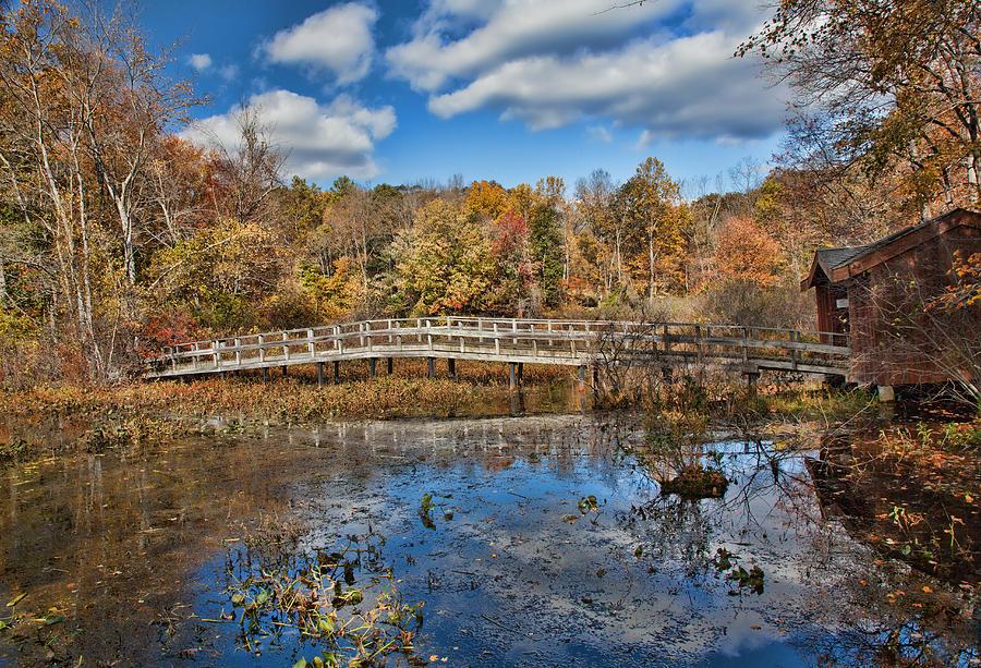 Landscape Photograph - Foot Bridge by June Marie Sobrito