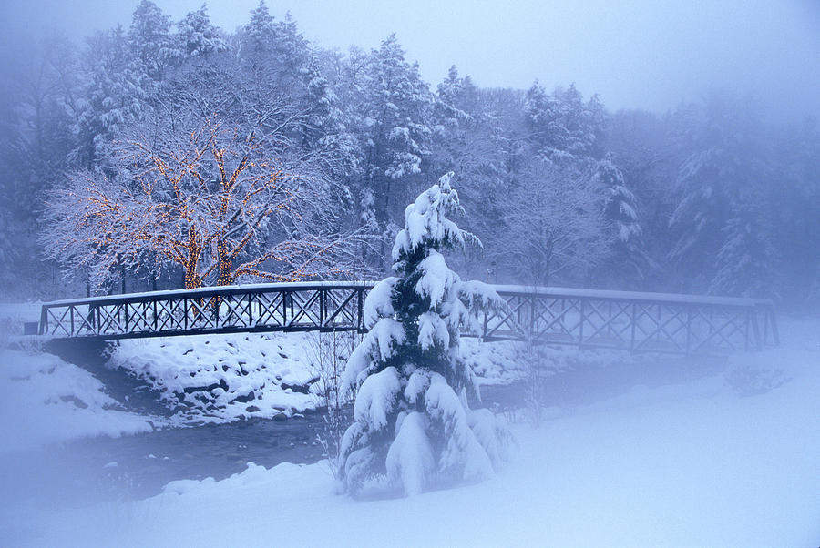 Foot Bridge Over Stream In Snowy Woods by Vintage Images