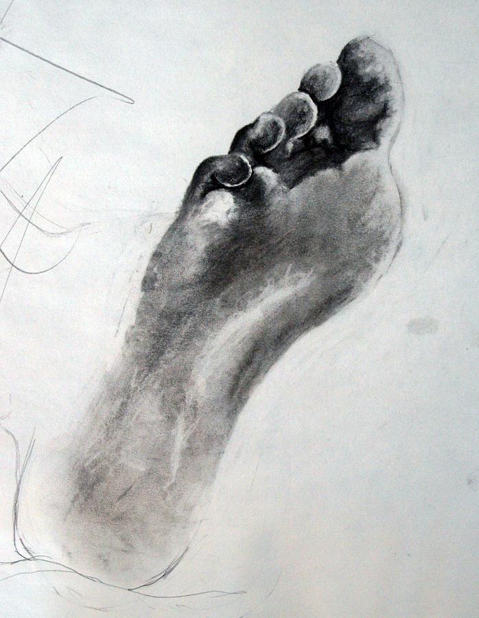 Toes Drawing - Foot Study by Corina Bishop
