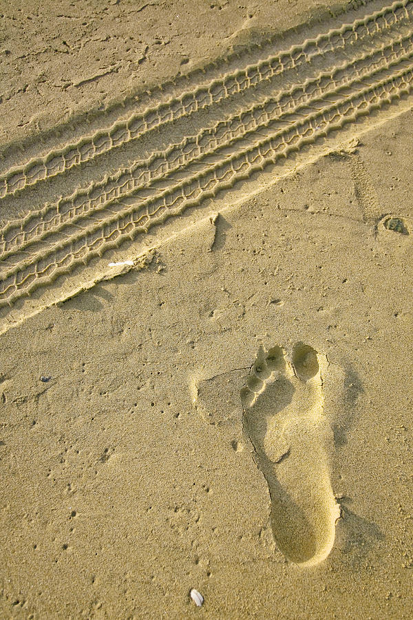 Tire Track Photograph - Footprint In The Sand by Doug Dailey