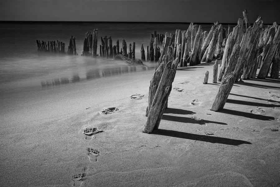 Footprints In The Sand Among The Pilings Photograph