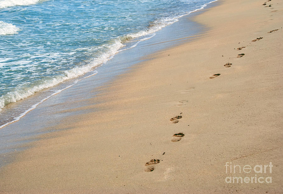 America Photograph - Footprints In The Sand by Juli Scalzi