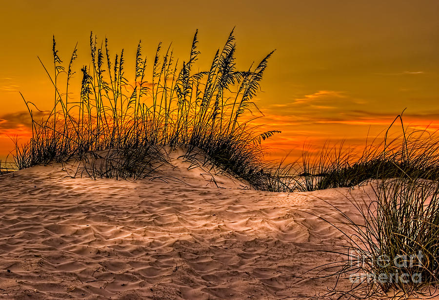 Footprints In The Sand Photograph - Footprints In The Sand by Marvin Spates