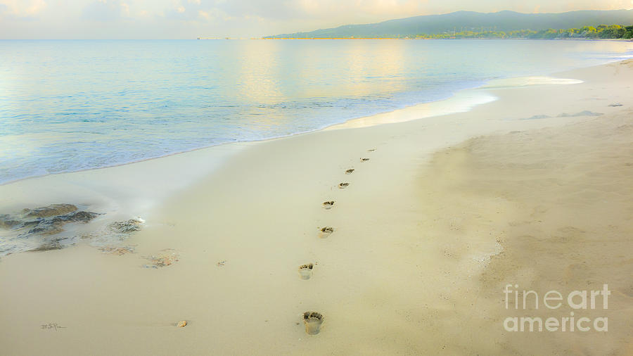 Footprints To Nowhere Photograph