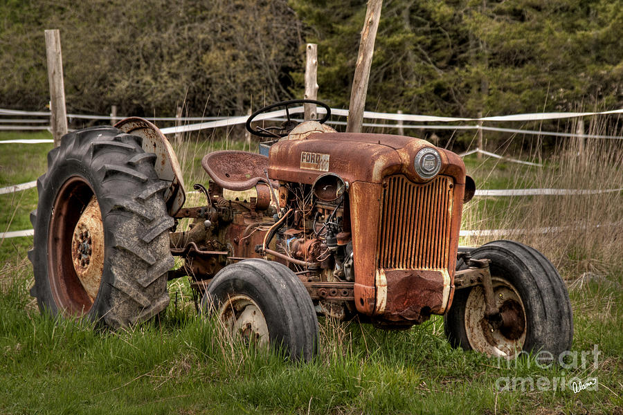 Ford Photograph - Ford Tractor by Alana Ranney