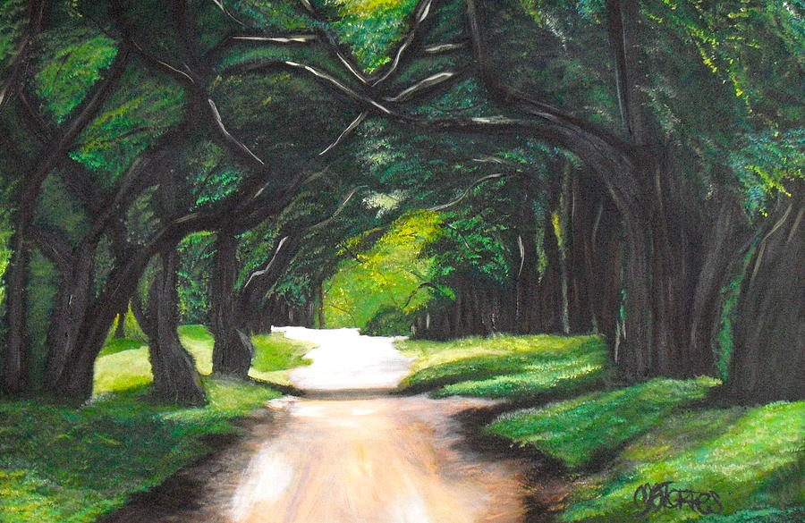 Landscape Painting - Forest Full Of Trees by Melissa Torres