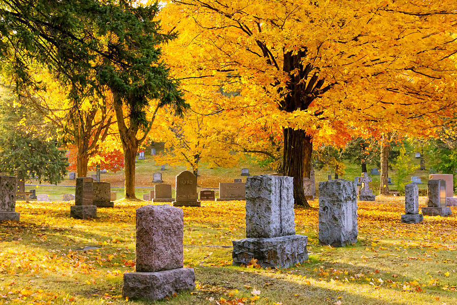 Autumn At Forest Hill Photograph by Mary Amerman