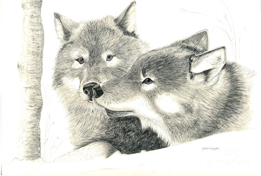Wolves In Love Painting - Forever Wolf Love-the Greeting by Joette Snyder