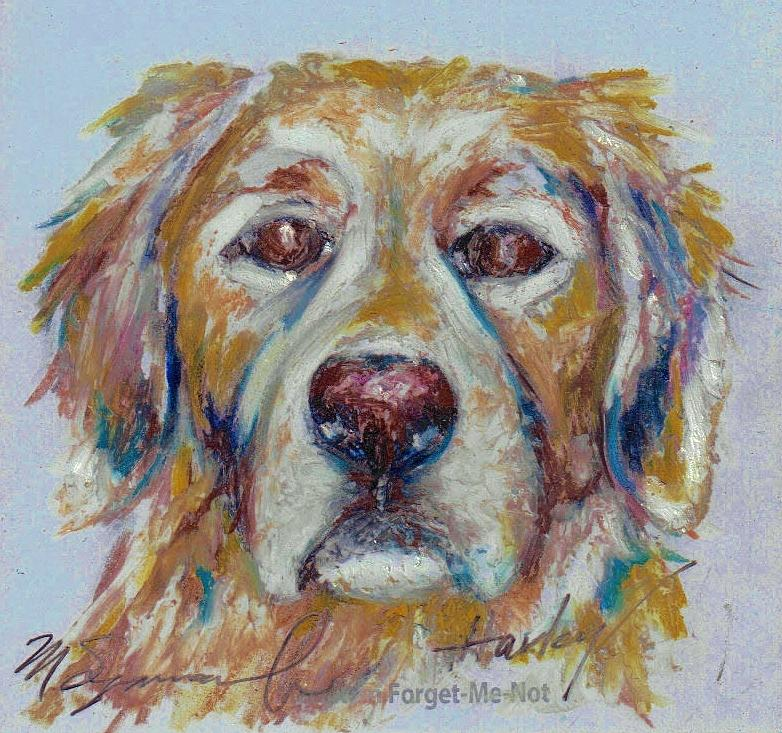 Colored Pencil Drawing - Forget Me Not Harley  by Melissa J Szymanski