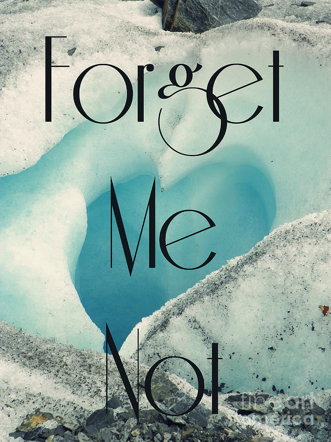 Forget Photograph - Forget Me Not by Jennifer Kimberly