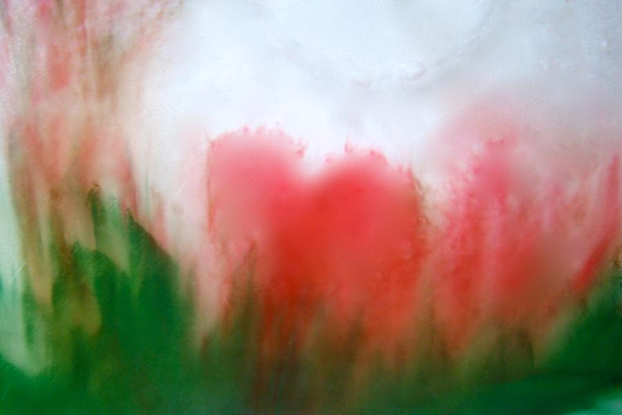 Forgiveness Transfigures Love -four by Judy McNutt