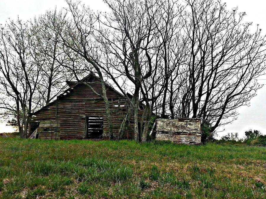 Barn Photograph - Forgotten Barn by Sarah E Kohara