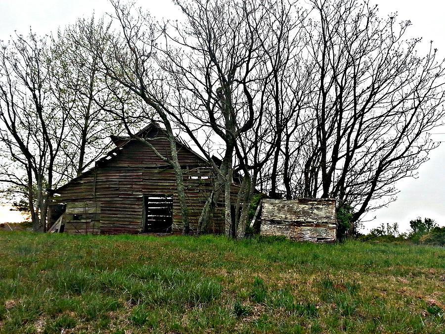 Barn Photograph - Forgotten Barn by Sarah E Kohara
