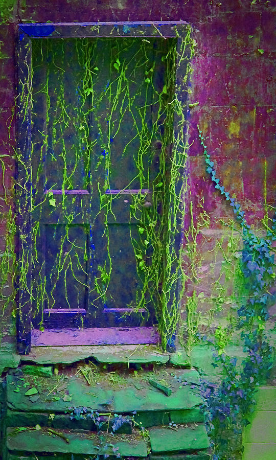 Garden Photograph - Forgotten Doorway by Tony Grider