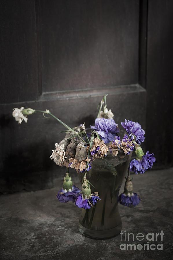 Dead Photograph - Forgotten Flowers by Svetlana Sewell