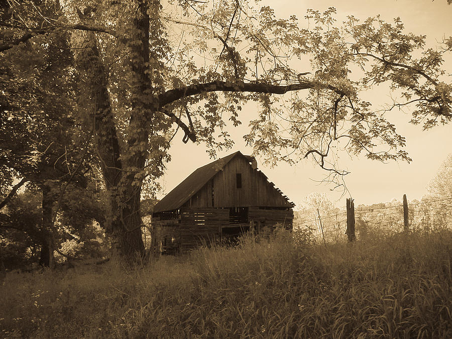 Barn Photograph - Forgotten by Robert J Andler