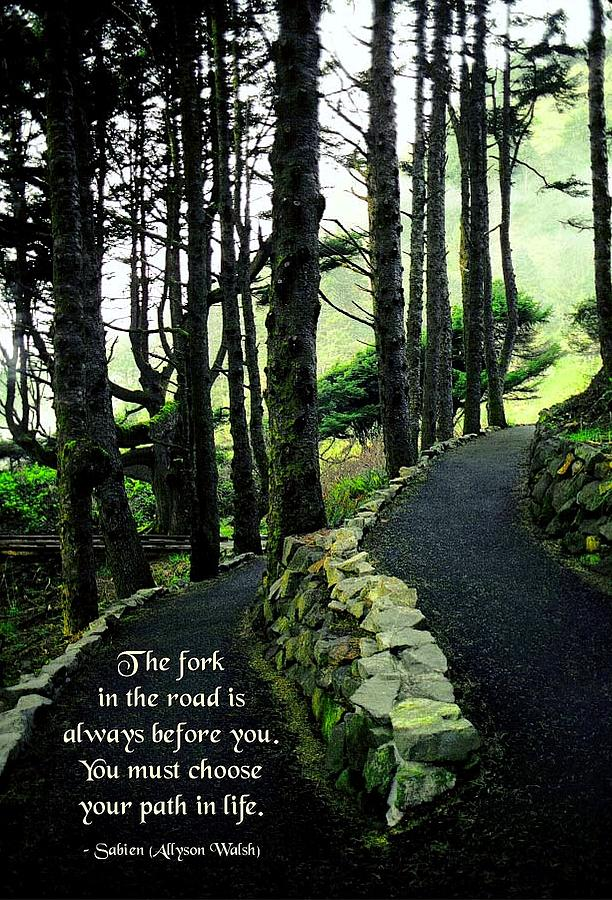 Quotation Photograph - Fork In The Road by Mike Flynn
