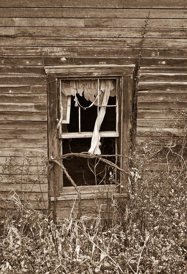 Forlorn Window Photograph