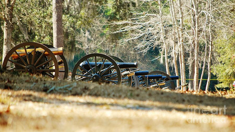 Fort Anderson Civil War Cannons Photograph