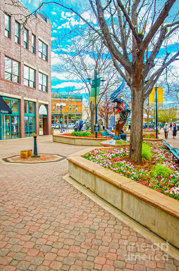 City Of Fort Collins Photograph - Fort Collins 3 by Baywest Imaging