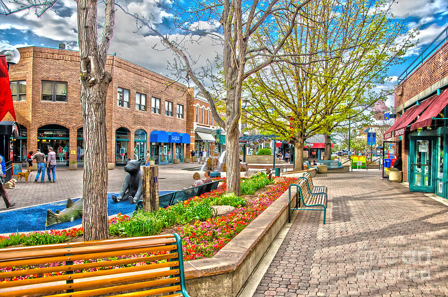 City Of Fort Collins Photograph - Fort Collins by Baywest Imaging