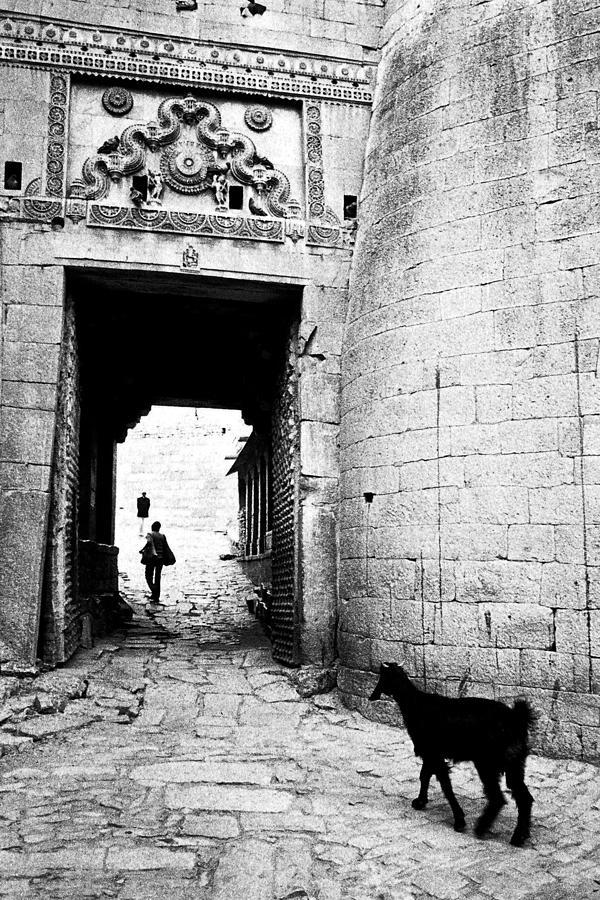 1984 Photograph - Fort Entrance Gate by Jagdish Agarwal