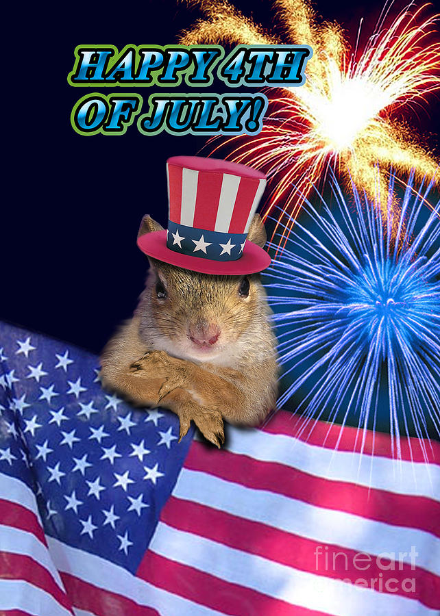Cute Photograph - Forth Of July Squirrel by Jeanette K