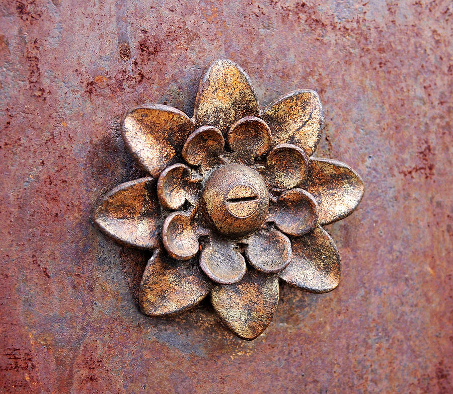 Rust Photograph - Found Art In New York City by Rona Black