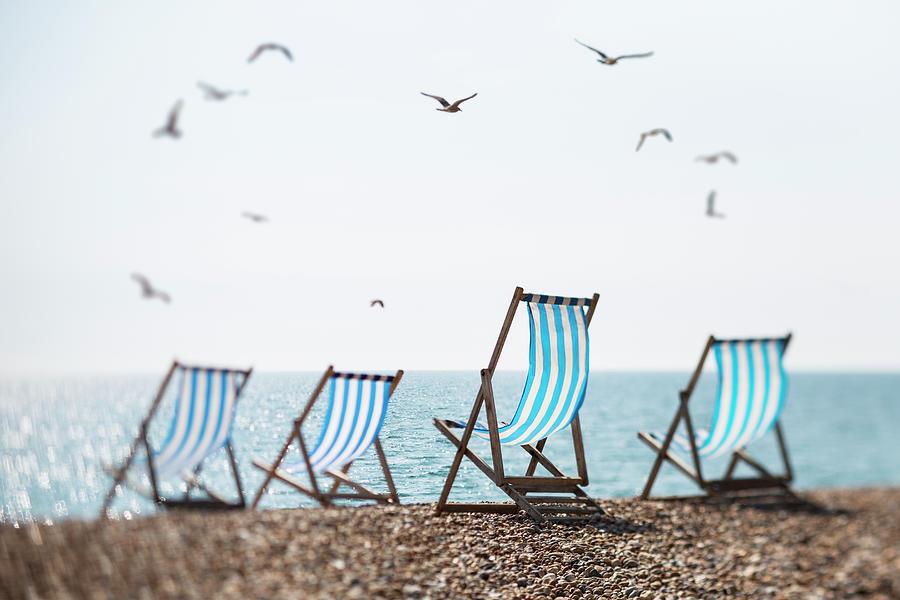 Four Deckchairs On A Beach And Seagulls Photograph by Richard Boll
