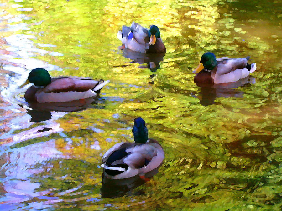 Four Ducks On Pond Painting