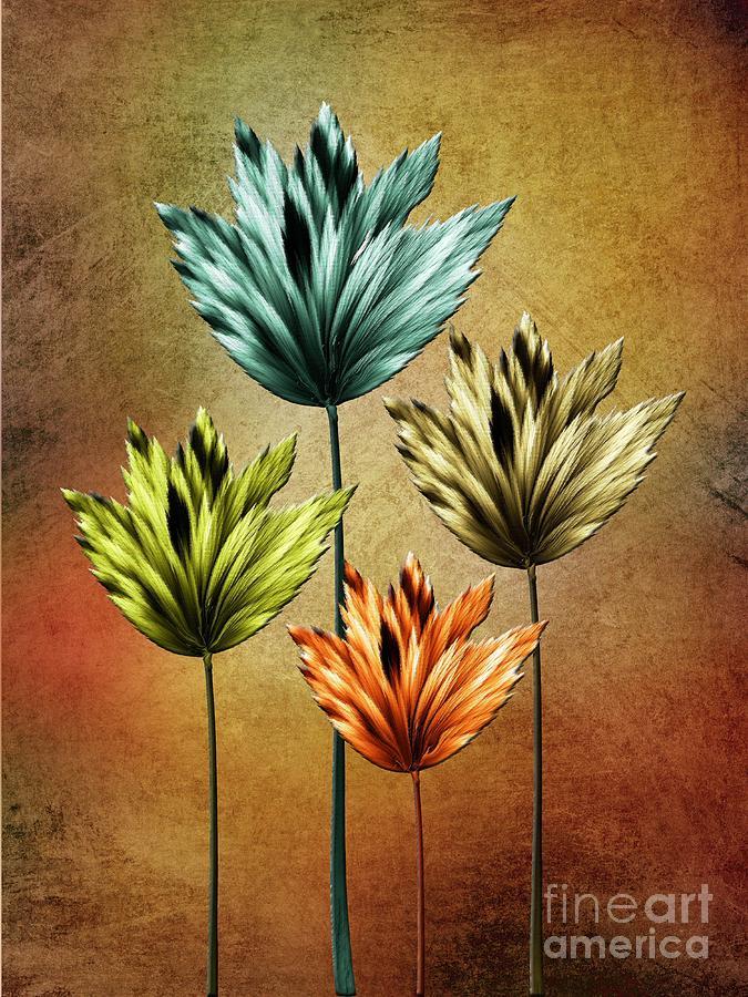 Abstract Digital Art - Four Fractal Flower by Klara Acel