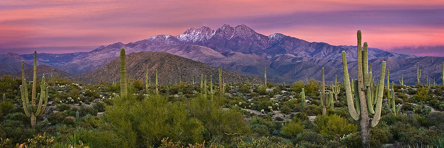 Four Peaks Photograph - Four Peaks Sunset Panorama by Dave Dilli