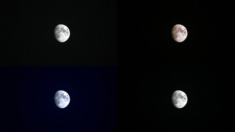 Moon Photograph - Four Shades by Augustina Trejo