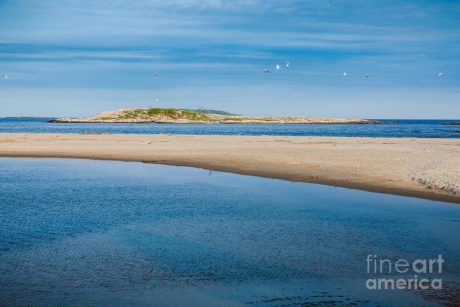 America Photograph - Fox Island by Susan Cole Kelly