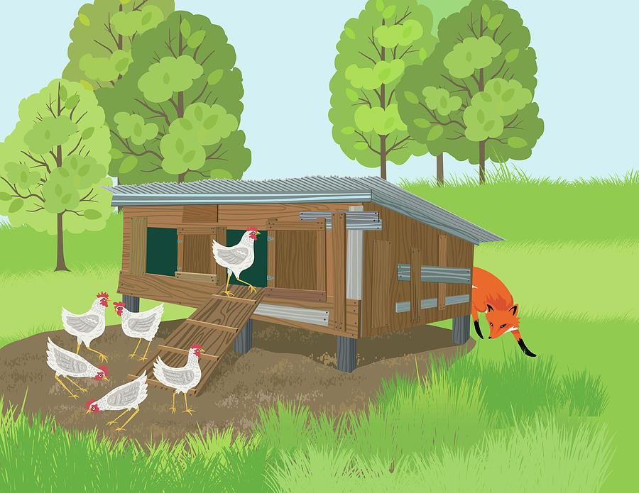 Fox Sneaks Around A Henhouse Digital Art by Diane Labombarbe