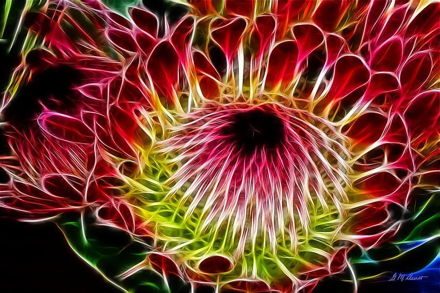Protea Digital Art - Fractal Protea by Michael Durst