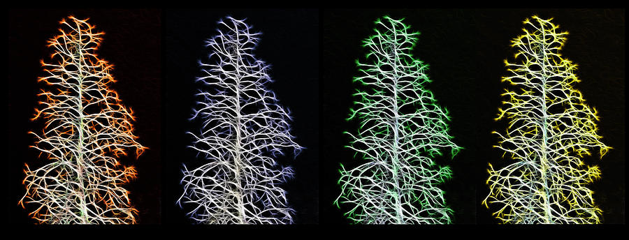 Tree Photograph - Fractal Seasons - Inverted Tetraptych by Steve Ohlsen