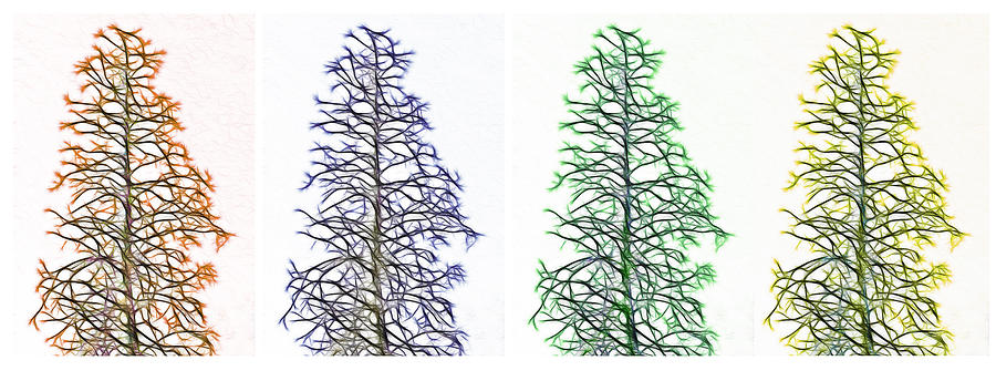 Tree Photograph - Fractal Seasons - Tetraptych by Steve Ohlsen