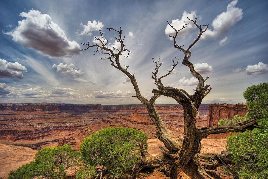Landscape Photograph - Fractured by Ryan Heffron