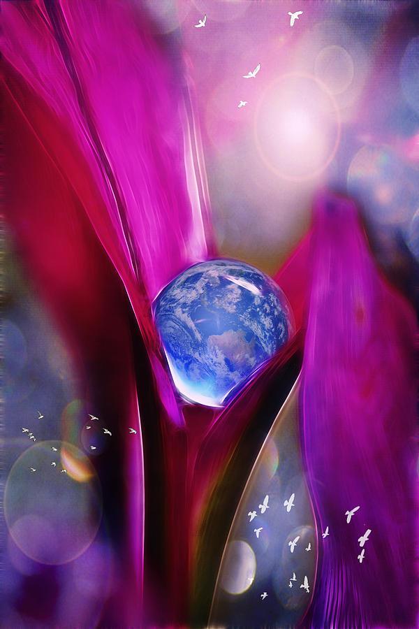 Floral Photograph - Fragile by John Rivera