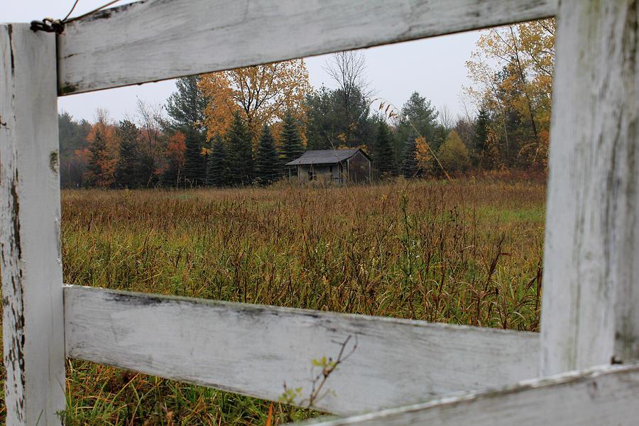 Cabin Photograph - Framed by Sheryl Burns
