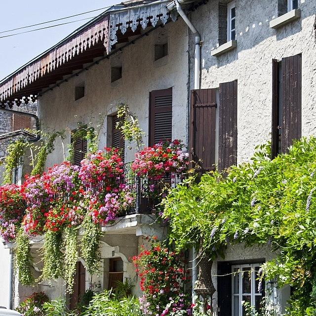 Europe Photograph - #france #summer #flowers #balcony by Georgia Fowler