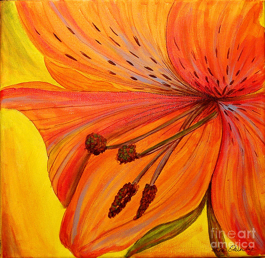 Freckles On Orange by Lee Owenby